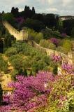 Une vue des murs du forte di Belvedere à Florence en Italie, pris de Piazzale Michaël Angelo une journée de printemps photographie stock libre de droits