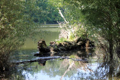 Une vue du Danube Photographie stock libre de droits