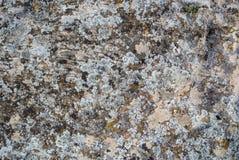 Une vue en gros plan d'une pierre Image stock