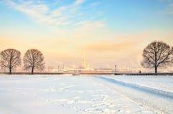 Une vue floue éloignée de forteresse de St Peter et de Paul des anciennes actions de Birzhevaya ajustent Photo libre de droits