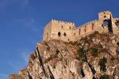 Une vue inférieure du château Photos stock