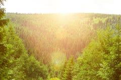 Une vue magnifique des belles montagnes brumeuses dans un paysage brumeux Scène peu commune dramatique Voyage de fond Beau thi image libre de droits