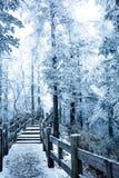 Une vue neigeuse de muntain xiling de neige photo stock