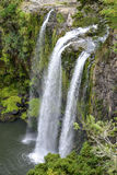 Une vue scénique de cascade de Whangarei Images stock