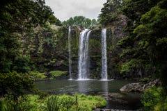 Une vue scénique de cascade et d'étang de Whangarei dessous Photo stock