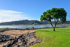 Une vue scénique de plage de Waitangi au-dessus de paysage de côte de Paihia Photo libre de droits