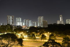 Une vue spectaculaire de nuit de Singapour avec la verdure couverte Photo libre de droits