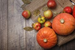 Une vue supérieure des deux potirons lumineux lumineux et des pommes colorées sur un tissu rustique sur un fond en bois Copiez l' photo stock