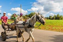 Une vue typique dans Vinales Cuba photographie stock