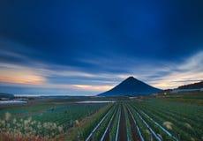 Une zone agricole au crépuscule Photo stock