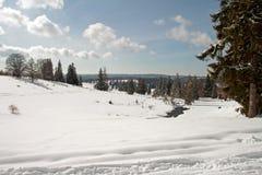 Une zone de l'hiver Photo libre de droits