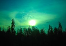 The unearthly green sky Stock Images