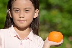Unemotional Girl Child With Oranges royalty free stock photo