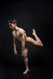 Unemotional principal dancer standing in the studio stock image