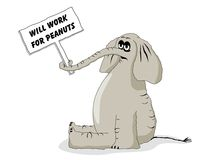Unemployed Elephant Cartoon Stock Photos