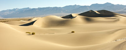 The Unending Dunes Royalty Free Stock Photos