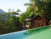 Unendlichkeitspool im Dschungel Lizenzfreie Stockbilder