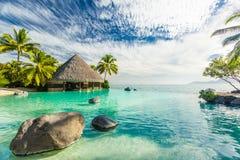 Unendlichkeitspool mit Palmefelsen, Tahiti, Französisch-Polynesien stockfotos