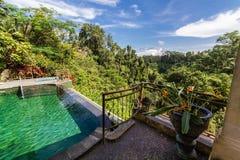 UnendlichkeitsSwimmingpool über dem Schauen des ruhigen Waldes Stockfotografie