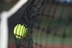 Unenforced error. Tennis ball in the net Stock Images