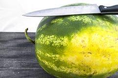 Unentbehrliche Frucht der Sommermonatswassermelone, mit einem Messer geschnitten zu werden auf Sie wartend, Stockbilder