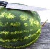 Unentbehrliche Frucht der Sommermonatswassermelone, mit einem Messer geschnitten zu werden auf Sie wartend, Lizenzfreie Stockfotos