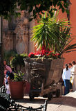 unesco городка Мексики guanajuato исторический Стоковое Фото
