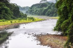 UNESCO Biosphere Reserve, Principe, Sao Tome and Principe, Atlantic Ocean, Africa. River that crosses the jungle of the island of Sao Tome, and that joins to the stock images