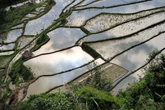 UNESCO Rice Terraces in Bangaan, Philippines Stock Photos