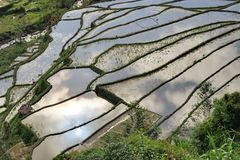 UNESCO Rice Terraces in Bangaan, Philippines Royalty Free Stock Photography