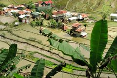 UNESCO Rice Terraces in Batad, Philippines Royalty Free Stock Photography