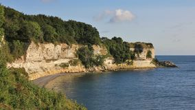 Stevns Klint, chalk stone cliff at the east coast of Denmark. Royalty Free Stock Image