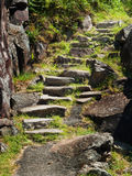 Uneven rock stairs along a cliff. Uneven stairs built from native rock climbing through a grassy slope beside a rock cliff Royalty Free Stock Photos