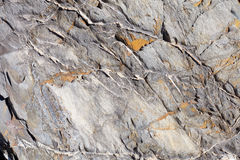 Uneven stone texture background with yellow lichen Stock Image