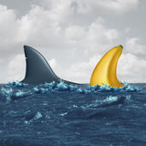 Unfair Negotiation. Business concept and out of your league symbol as a shark fin facing off with a similar shaped banana as a metaphor for lack of skills and Stock Photos