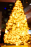 Unfcused fir lights Stock Photography