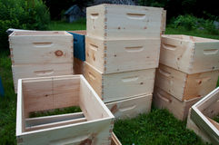 Unfinished Bee Colony Super Boxes Stock Images