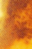 Unfinished honey Stock Photo
