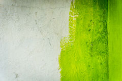 Unfinished painted paint wall with green color and white photo taken in jakarta indonesia Royalty Free Stock Photos