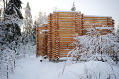 Unfinished wooden country house in winter Stock Image