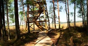 The unfinished wooden gazebo 4K FS700 Odyssey 7Q. The unfinished wooden gazebo in the middle of the forest with the sea on the side 4K FS700 Odyssey 7Q stock video