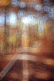 Unfocused achtergrond de herfstbos Stock Foto's