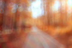 Unfocused background autumn forest Stock Photography