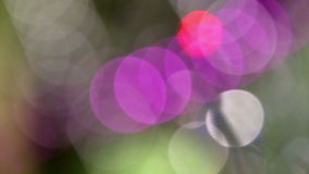 Unfocused lights background. Abstract motion background with unfocused lights stock video