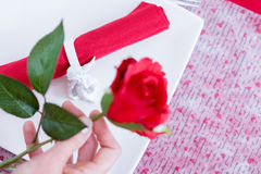 Unfocused red rose in woman hand Royalty Free Stock Photography