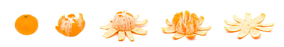 Unfolding orange royalty free stock images