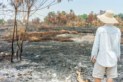 Unfortunate farmer looking to his burnt agricultural field Stock Photos