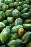 Unfresh papaya Royalty Free Stock Photography