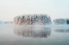 Unfrozen lake in the winter forests Stock Images