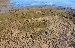 Unfruchtbare Erde Trocknen Sie gebrochene Erde Gebrochenes Schlammmuster Boden in den Sprüngen Creviced Beschaffenheit Dürrenland Stockfotografie